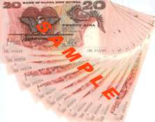 PNG Money K20