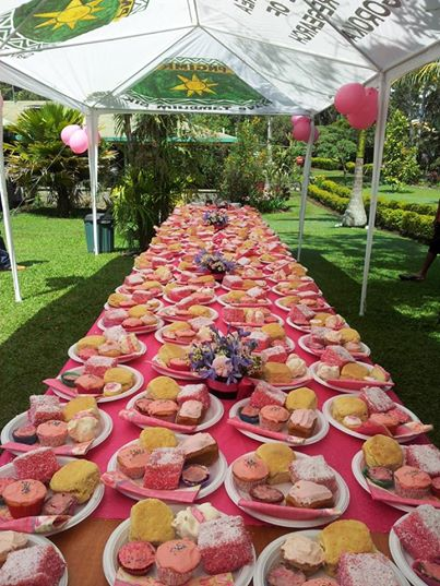 Pink Morning Tea at IMR