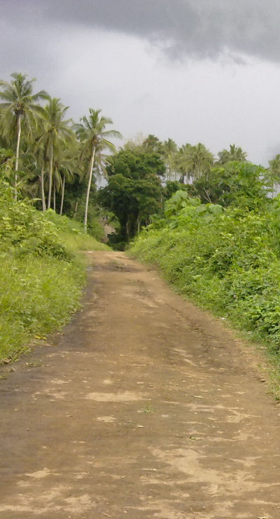 A village road in PNG