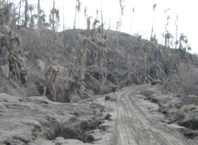 Ash covered road